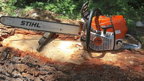 Tree cutting with a STIHL MS 661 C chainsaw - YouTube